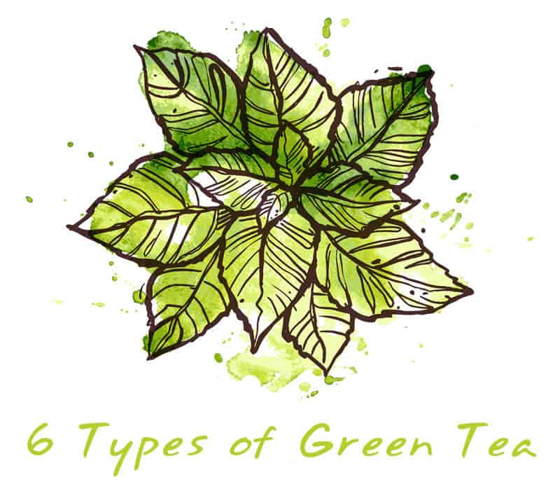 type of green tea